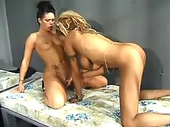 Glamour black lesbians have fun on party